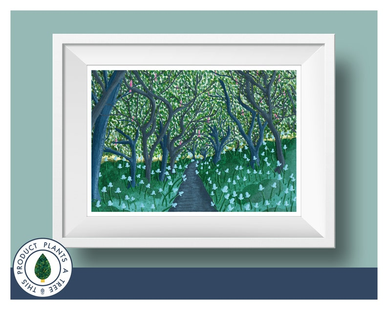 Woodland  Forest  Walking in the Woods  Bluebell  Trees  image 0