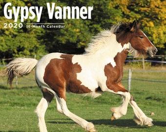 Gypsy vanner   Etsy
