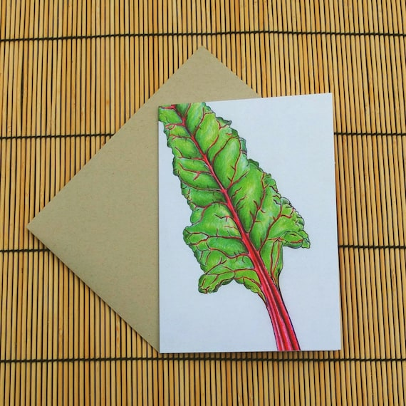 Rainbow Chard Greeting Card Etsy
