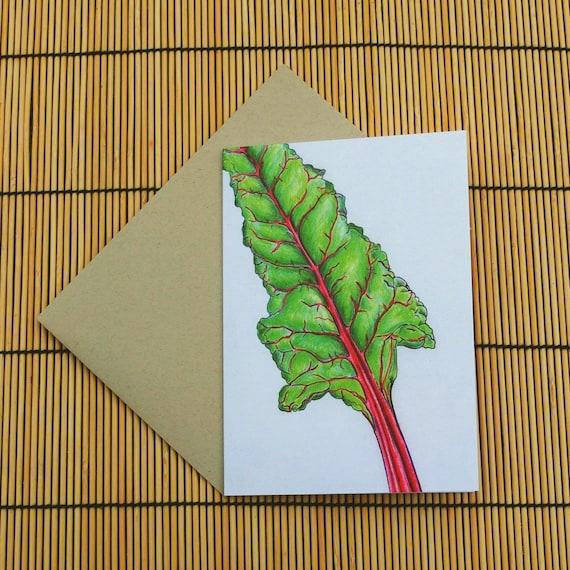 Rainbow Chard Greeting Card Etsy