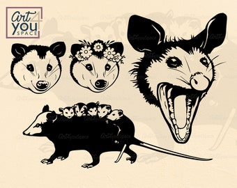 How to Draw an Opossum 5   Art clipart, Drawings, Possum