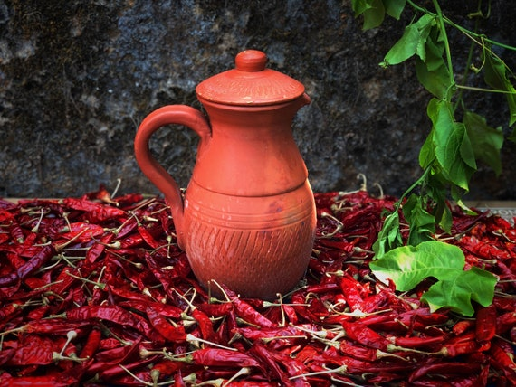 Ecocrafts India Online Handmade Terracotta Jug Clay Pot With Etsy,How To Clean Fish Tank Filter Sponge