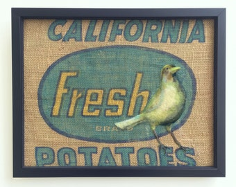 Fresh Bird ... Framed Needle Felted Bird Wall Art on Vintage American FeedSack.