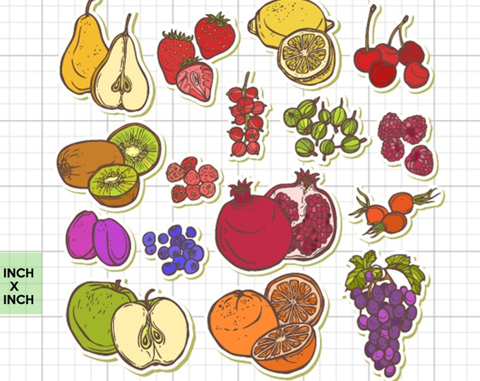 16 FRUIT stickers in standard, photo or vinyl print materials with laminate or magnet options available.  Premium full color.