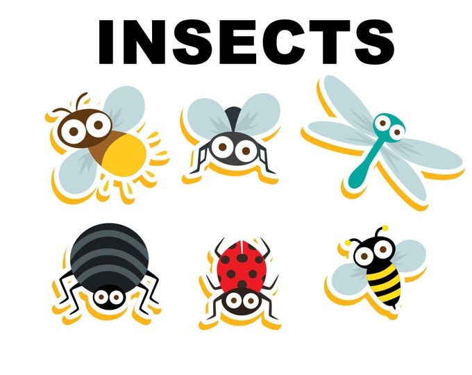 6 INSECTS stickers in standard, photo or vinyl print materials with laminate or magnet options available.  Premium full color.
