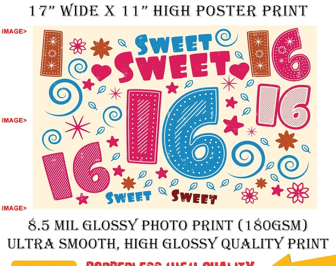 11x17 Poster Photo Print Art Sweet Sixteen 16 Fun Poster (Landscape Orientation) High Quality Glossy Smooth Photo Print