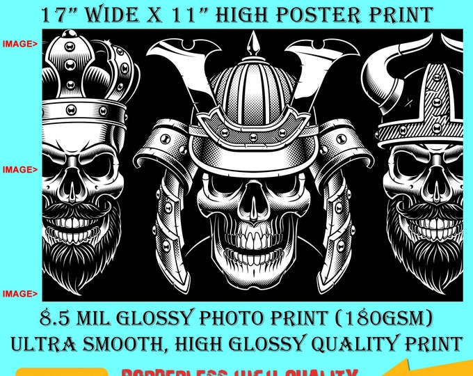 11x17 Poster Photo Print Art Viking Skull Fun Poster (Landscape Orientation) High Quality Glossy Smooth Photo Print
