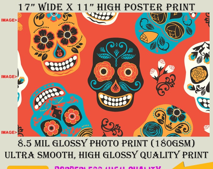 11x17 Poster Photo Print Art SKULL CANDY Fun Poster (Landscape Orientation) High Quality Glossy Smooth Photo Print