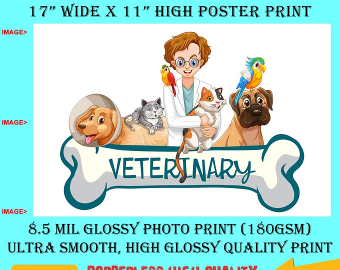 11x17 Poster Photo Print Art VETERINARY VET CLINIC Fun Poster (Landscape Orientation) High Quality Glossy Smooth Photo Print