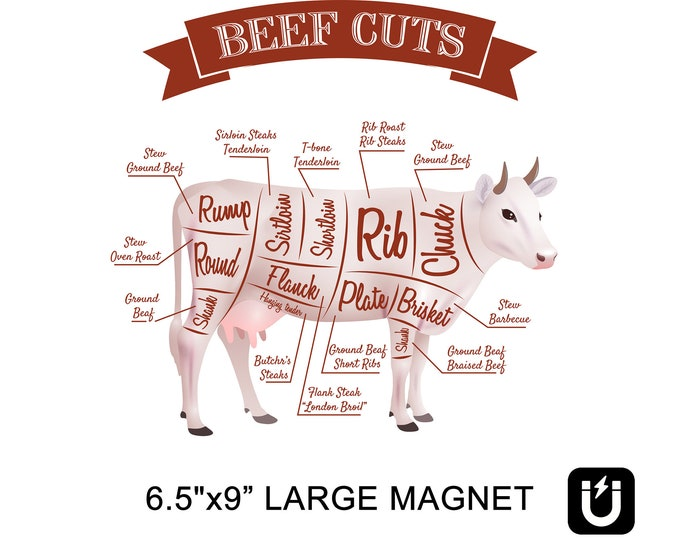 Butcher guide beef cuts fridge magnet 6.5 inch x 9 inch premium large magnet