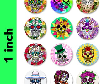 Fun Skulls Magnets 1 INCH Round Fridge Magnets - 12 Magnets