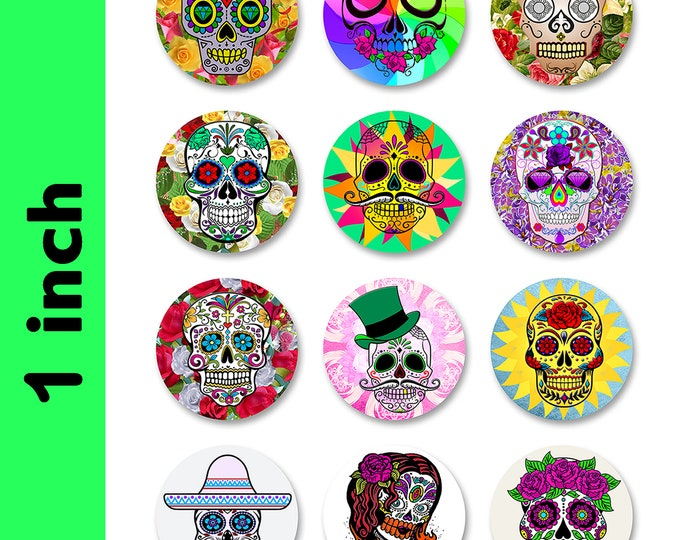 12 PINS Skull Candy Collection Fun 1 inch buttons. Skull Skeleton Pin back button