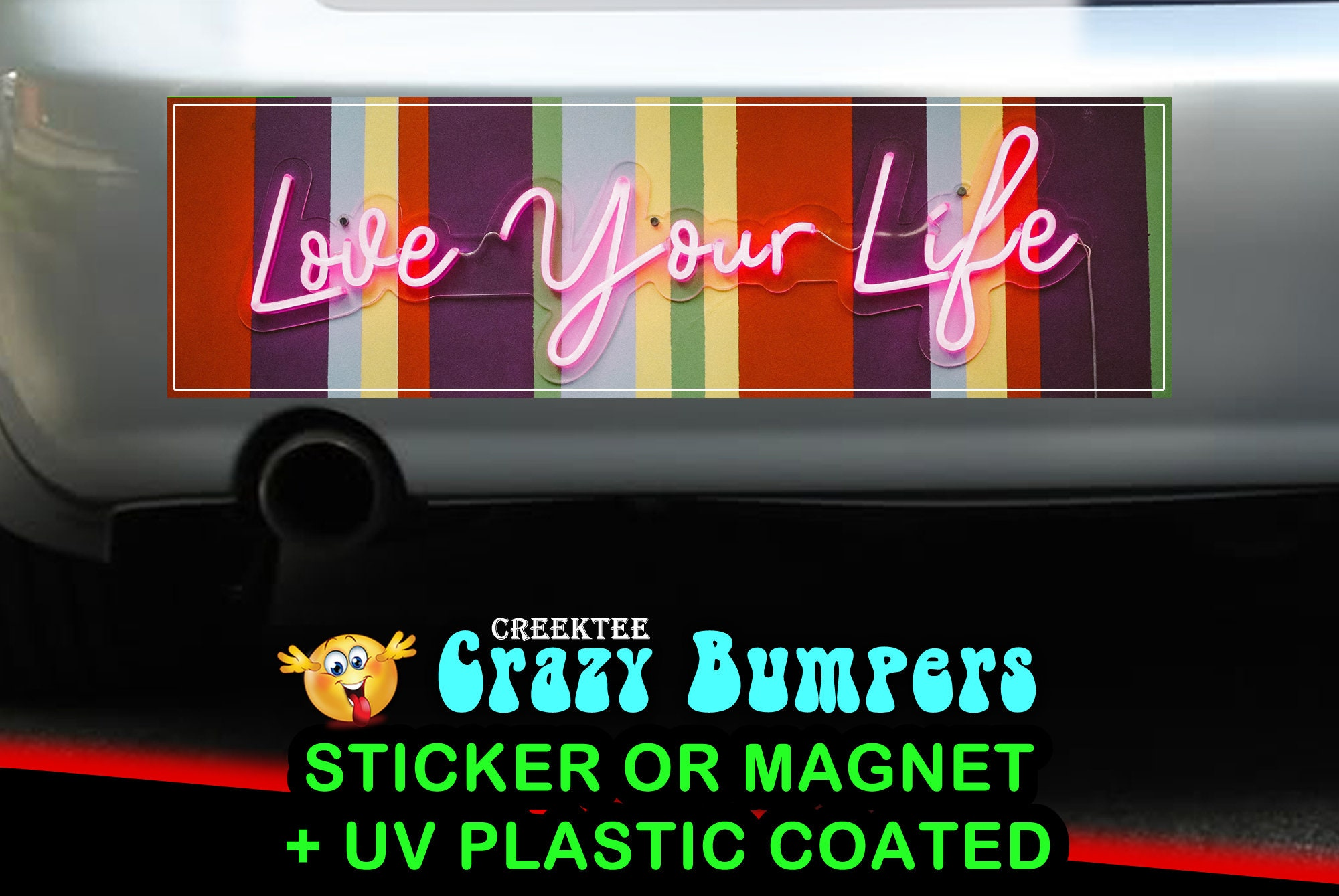 CAD$7.99 - Love Your Life 10 x 3 Bumper Sticker or Magnet - Custom changes and orders welcomed!