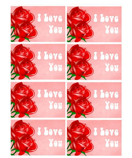 56 Assorted Super Pack Fun 3 inch x 2 inch Stickers -I Love You Stickers