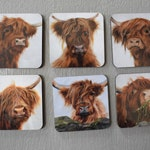 Set of 6 Highland Cow magnets