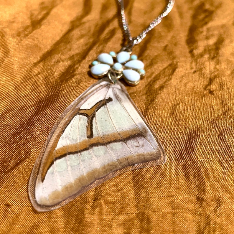 SOLD Preserved Butterly Wing Necklace