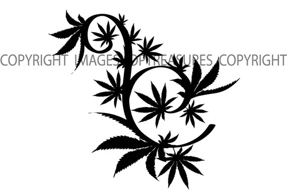 Marijuana Vine Tree Leaf Medicine Medical Cannabis Pot Weed Etsy