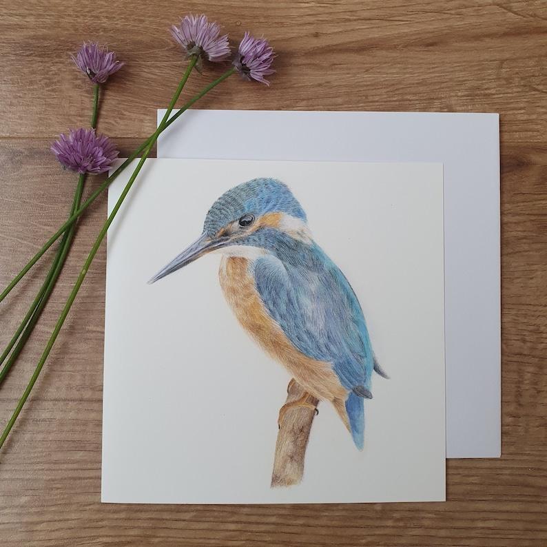 kingfisher greetings card 6x6'' blank inside  etsy