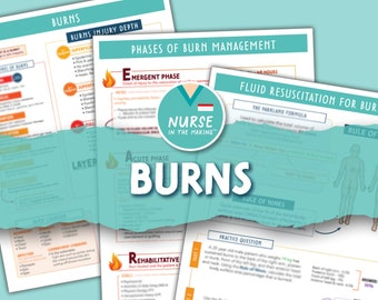 Burns   3 pages   Digital Download