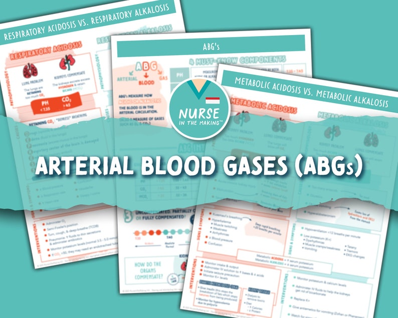 Arterial Blood Gases ABG's Explained  3 Pages  Nursing image 1