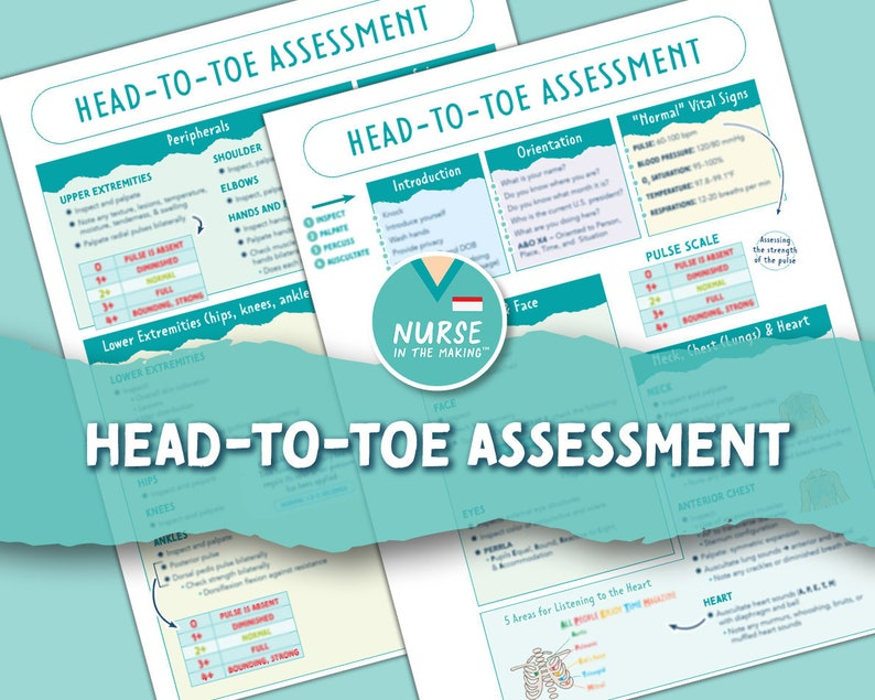 Head-To-Toe Assessment Guide     Nursing Students    Health image 1