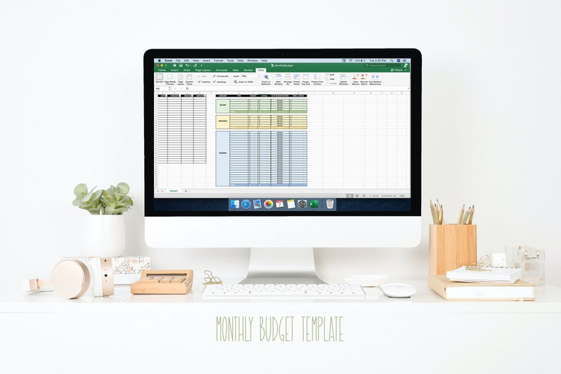 Monthly Budget Template image 0