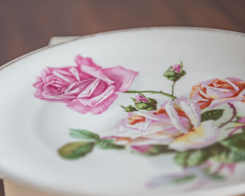 CT Altwasser German painted plate with lovely detailed roses and gilt rim