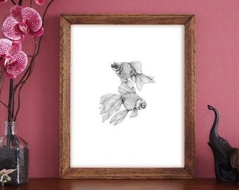 Delightful black & white fish illustration Fine Art print showing two fan tailed fish.