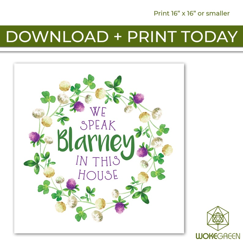 INSTANT DOWNLOAD: We Speak Blarney In This House Poster image 0