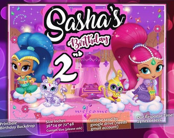 Shimmer and Shine Birthday Party Personalized Vinyl Banner with Picture Photo 2x5 FEET **FREE SHIPPING