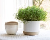 Set of 2 White Ceramic Flower Plant Pots 6.5 Inch - Indoor Planters, Plant Containers with Beige and Cracked Detailing
