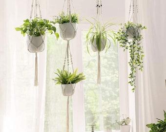 Sturdy Plant Hanger Etsy