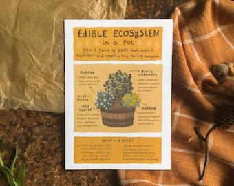 Edible Ecosystem Infographic | A6 Art Print Postcard