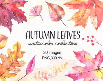 Watercolor Fall Autumn Leaves.Autumn Leaves Clip Art, Thanksgiving Clipart, Watercolor Leaves Clipart, Digital Leaves.