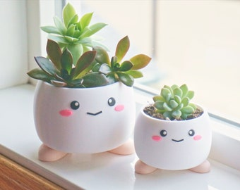 Cute Smiling Planter with Feet, Office Supply Organizer, Desk Decoration 3D Printed, Plant Pot with Shoes, Kawaii Anime Face