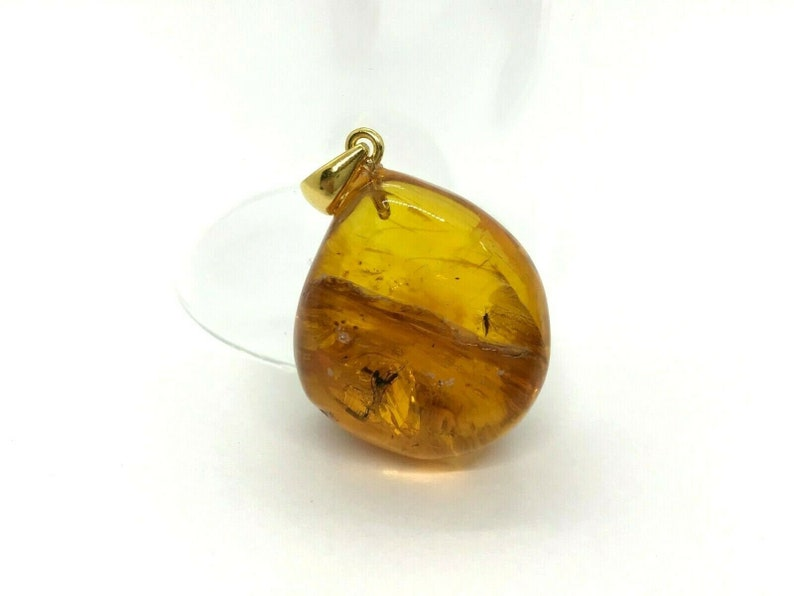 2 Insects Natural Baltic Amber Pendant With Insect Inclusion SilverGP 6,7g 7348
