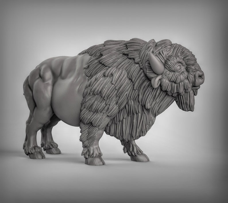 2 Buffalo