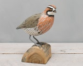 Bob White Quail, Standing- Hand Carved Wooden Bird - 9 quot H