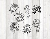 Set of 7 different roses; rose bud; Great. Vector cutting file for Silhouette Cameo and Cricut; SVG, Studio3, PNG + EPS.