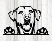 Labrador retriever portrait. Dog. Vector cutting file for Silhouette Cameo and Cricut; SVG, Studio3, PNG + EPS.