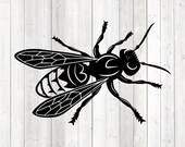 Giant wasp; Bug. Vector cutting file for Silhouette Cameo and Cricut; SVG, Studio3, PNG + EPS.