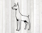 Dobermann, standing dog. Vector cutting file for Silhouette Cameo and Cricut; SVG, Studio3, PNG + EPS.