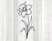 Large daffodil with stem and leaves. Vector cutting file for Silhouette Cameo and Cricut; SVG, Studio3, PNG + EPS.