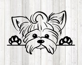Yorkshire terrier portrait. Dog. Vector cutting file for Silhouette Cameo and Cricut; SVG, Studio3, PNG + EPS.