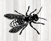 Giant wasp; insect. Vector cutting file for Silhouette Cameo and Cricut; SVG, Studio3, PNG + EPS.