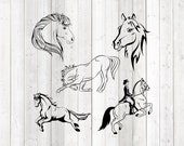 Set of 5 horses; horse head; canter; dressage; bending. Vector cutting file for Silhouette Cameo and Cricut; SVG, Studio3, PNG + EPS.