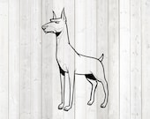Doberman, standing dog. Vector cutting file for Silhouette Cameo and Cricut; SVG, Studio3, PNG + EPS.
