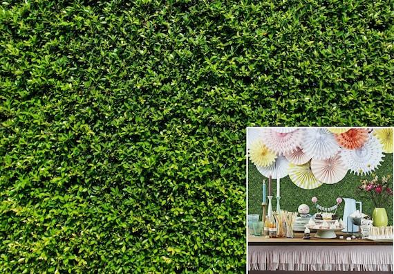 Grass Wall Backdrop Green Bush Wall Backdrops, Spring Summer Printed Vinyl  Fabric Photography Background for Garden, Backyard and Home Decor