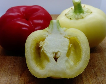 20 Fresh Seeds Alma Paprika Peppers Make Your Own Paprika * * Hot Apple