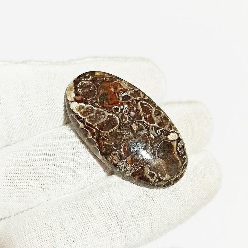 Oval Shape 61.5 Carat Natural Turtella Agate Gemstone Loose Cabochon Mineral,Healing Crystal G23339